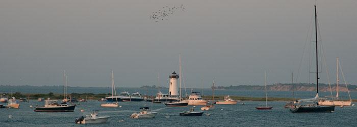 MV charters | MV Ferry